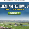 Place Your Bets: Watch Out for the Cheltenham Festival Results