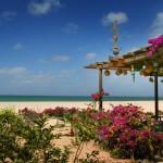 Parque das Dunas hotel in Cape Verde