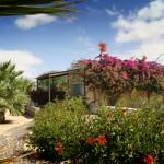 Parque das Dunas hotel in Cape Verde 2